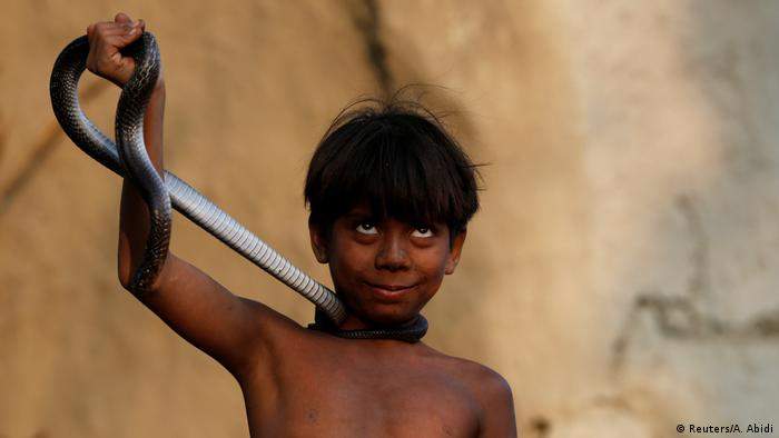 Snake charming in India (Reuters/A. Abidi)