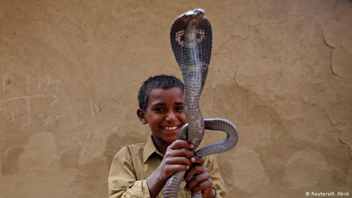 Indien Schlangenbeschwörer (Reuters/A. Abidi)