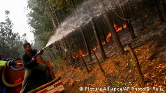 A man works to stop a forest fire in Hualqui, Chile, Saturday, January 28, 2017