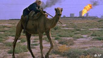 A man rides a camel while unwanted gas byproducts are burned off at a petrochemical factory in the background in the desert