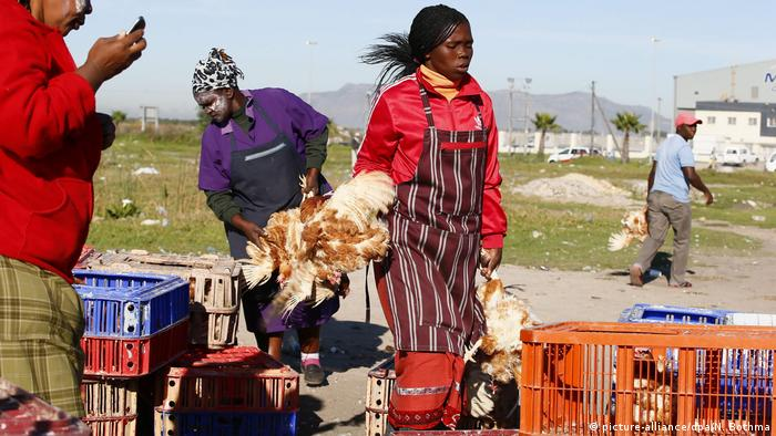 A South African woman sells chicken at the roadside (picture-alliance/dpa/N. Bothma)