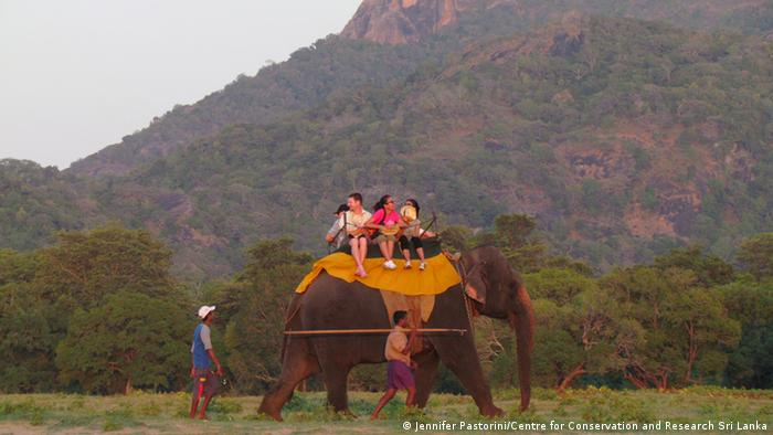 people riding an elephant in front of a mountain panorama
