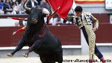 FILE- Spanish bullfighter Victor Barrio fights with his first bull of the evening during the 16th bullfight held on the occasion of the San Isidro Fest at Las Ventas bullring in Madrid, Spain, 24 May 2015. EPA/ALBERTO MARTIN dpa (zu dpa: Spanischer Torero von Stier getötet - erstmals in diesem Jahrhundert vom 10.07.2016) +++(c) dpa - Bildfunk+++  