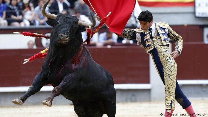Spanien Stierkampf (picture-alliance/dpa/A. Martin)