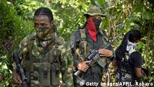 Danilo Hernandez (C), commander of the Western Front of War Cimarron Resistance of the National Liberation Army (ELN) guerrilla, speaks during an interview with AFP, on January 26, 2017, in Alto Baudo, department of Choco, Colombia. Colombia's last active rebel force, the leftist National Liberation Army (ELN), promises to release a hostage Thursday to clear the way for peace talks with the government. / AFP / LUIS ROBAYO (Photo credit should read LUIS ROBAYO/AFP/Getty Images)