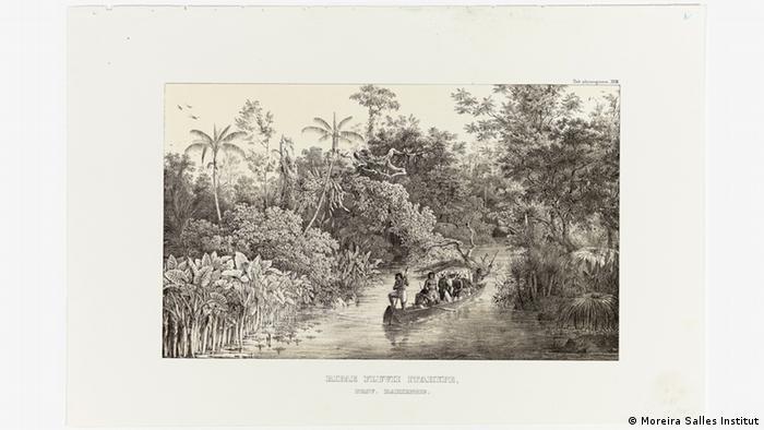 Ausstellung Carl Friedrich Philipp von Martius - Lithografie Brasilien (Moreira Salles Institut)