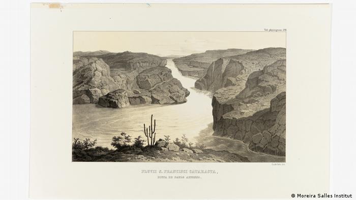 Ausstellung Carl Friedrich Philipp von Martius - Lithografie Brasilien