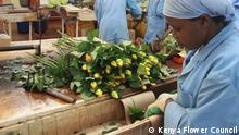 Global Ideas - Kenya Flower Council