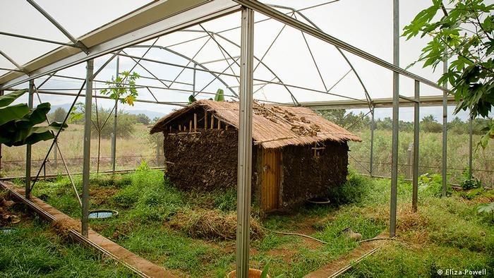 Tansania Hütte in Moskito-City (DW/J. Groß)