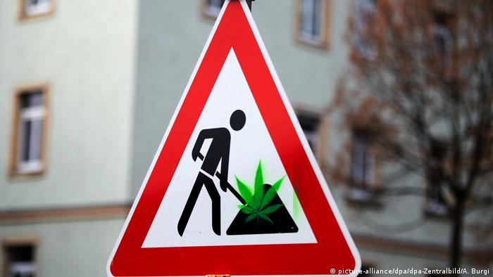 BdT mit Deutschlandbezug | Cannabis Anbau mal anders (picture-alliance/dpa/dpa-Zentralbild/A. Burgi)