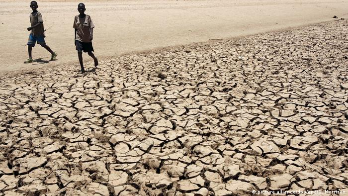 Afrika Kenia Dürre