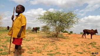 Junge im Niger (Foto: AP)