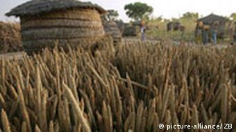 Millet bales in the village of Tapkin Marke