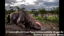World Press Photo Awards 2017 - Nature - First Prize, Stories - Brent Stirton, Getty Images for National Geographic Magazine