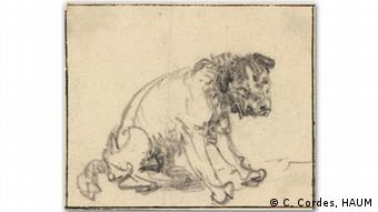 Drawing of dog by Rembrandt in the Herzog Anton Ulrich Museum in Braunschweig (C. Cordes, HAUM)