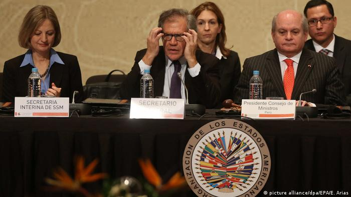 Paulina Duarte Direktorin der OEA (Organisation Amerikanischer Staaten) in Washington (picture alliance/dpa/EPA/E. Arias)