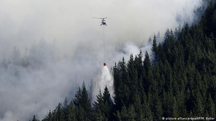 Busch- und Waldbrände in Neuseeland