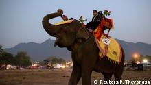 Laos Elefantenfest