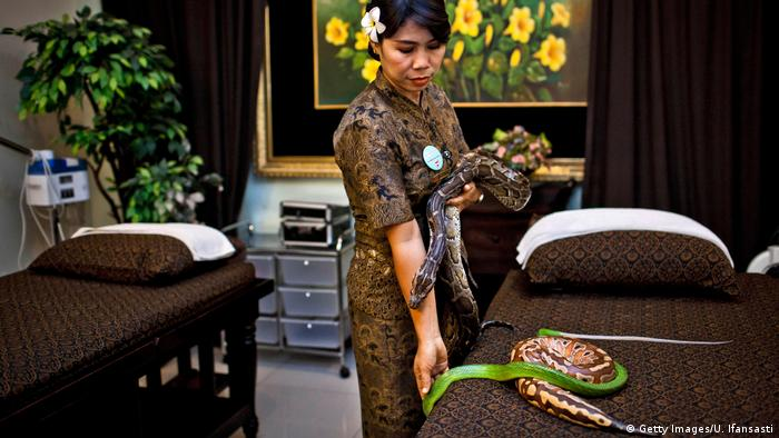Indonesien Reflexology Spa - Schlangen-Massage (Getty Images/U. Ifansasti)