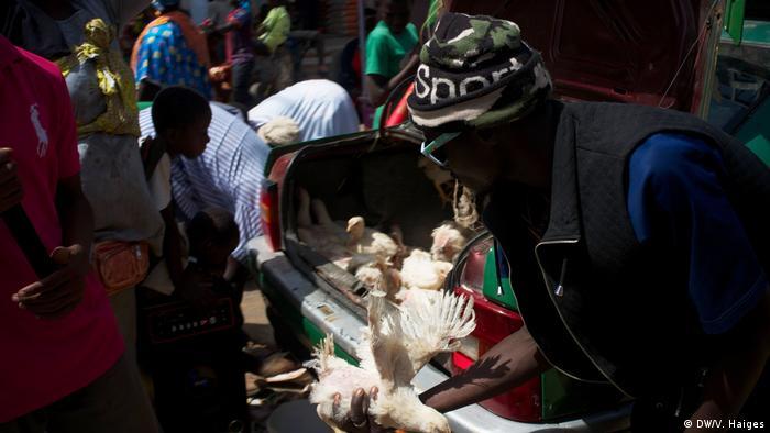 Gambia vor der Vereidigung von Adama Barrow (DW/V. Haiges)