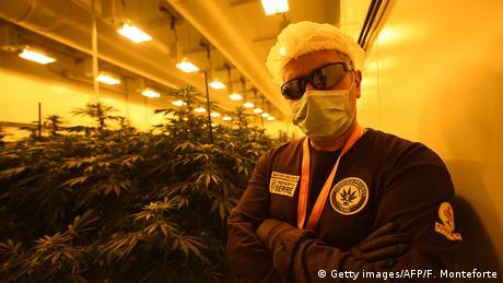 Italien Militär baut Cannabis für Schwerkranke an (Getty images/AFP/F. Monteforte)