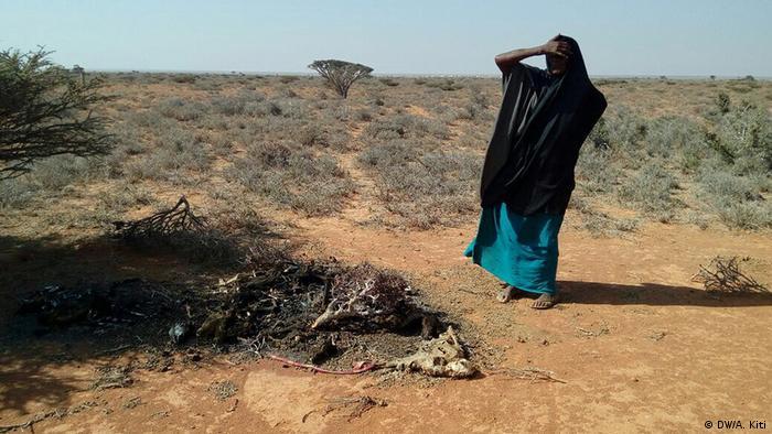 Посуха в Сомалі