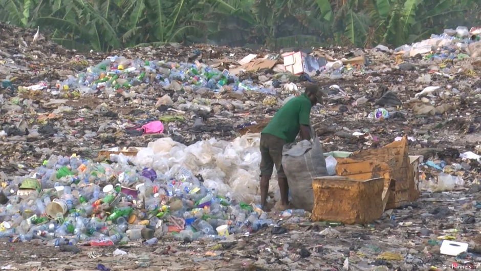 From waste to wealth eco africa dw for Wealth from waste ideas