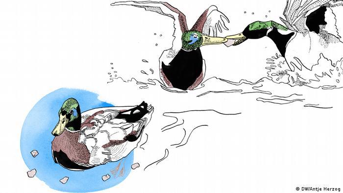 DW Illustration zum Sprichwort: Wenn zwei sich streiten, freut sich der Dritte. (DW/Antje Herzog)