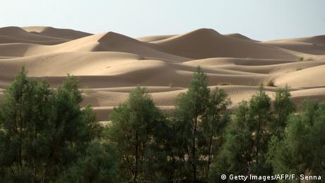 Marokko Sahara (Getty Images/AFP/F. Senna)