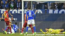 Deutschland Schalke 04 vs 1899 Hoffenheim (picture-alliance/AP Photo/M. Meissner)