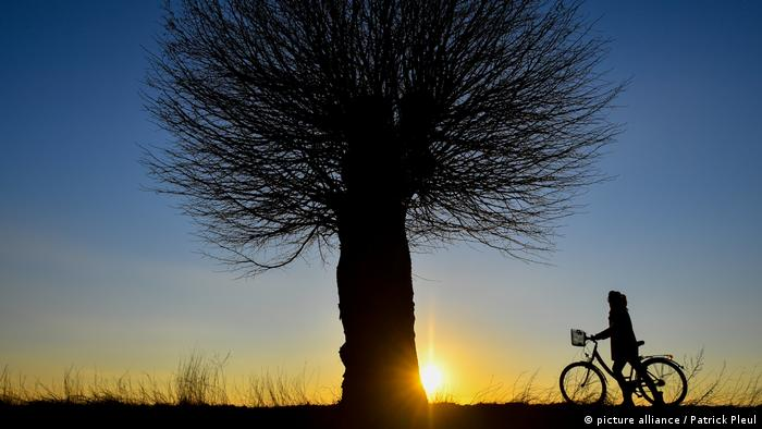 Sunset with biker on the Oderbruch bike path (picture alliance / Patrick Pleul)