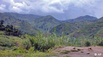 The fertile lands of Masisi in Eastern Congo