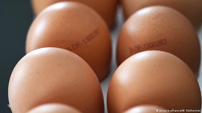 Huevos de producción ecológica.