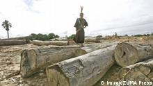 Peru Edwin Chota Umweltaktivist