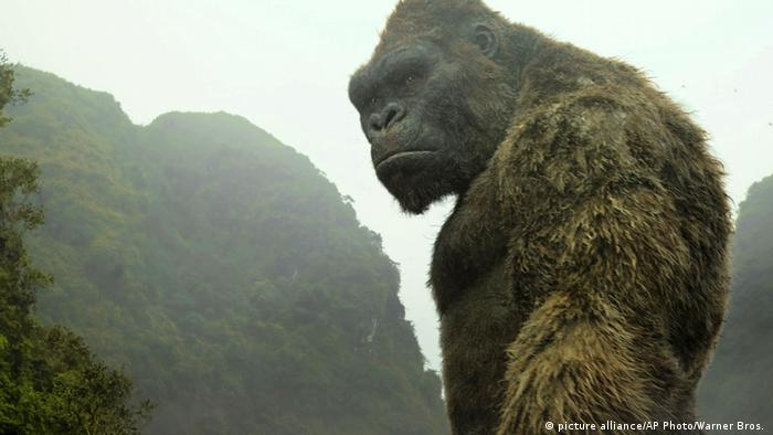 Film Review Kong: Skull Island Filmstill (picture alliance/AP Photo/Warner Bros. )