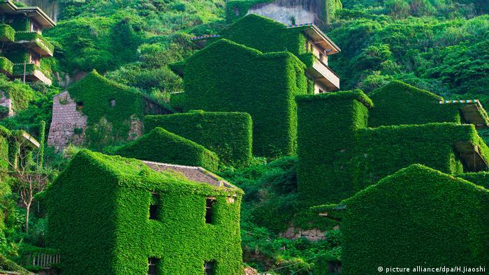 Geierstadt China Shengshan (picture alliance/dpa/H.Jiaoshi)