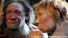 Neandertal insanı (model)