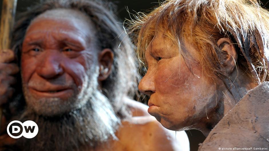 Neanderthal gene increases risk of severe coronavirus: study