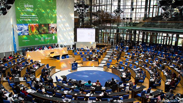 Bonn Intergovernmental Science-Policy Platform on Biodiversity and Ecosystem Services ( IISD/ENB|Sean Wu )