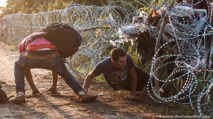 الصورة: لاجئان يحاولان تجاوز الأسلاك الشائكة على الحدود المجرية الصربية