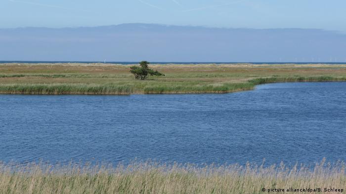 Полуостров Фишланд-Дарс-Цингст на Балтийском море