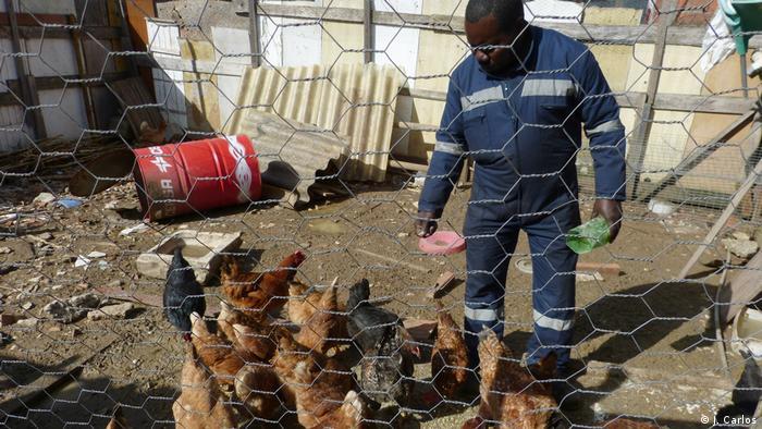 Portugal | Afrikaner in Lissabon | Tieraufzucht (J. Carlos)