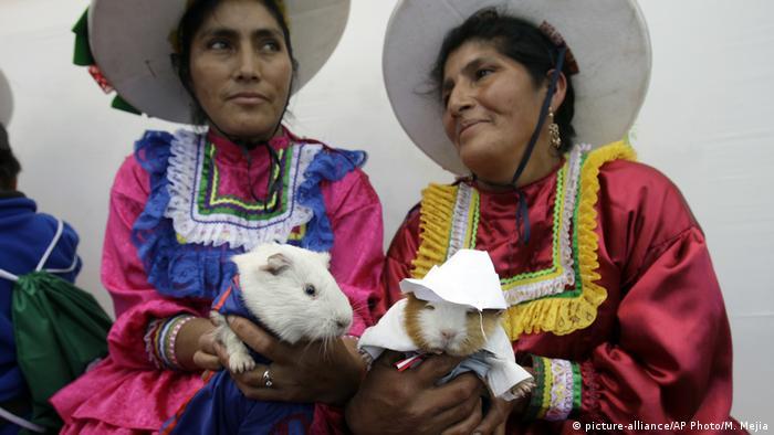 Peru - Guinea pig food festival in Huacho