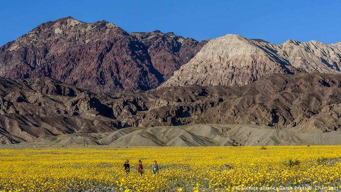 USA Kalifornien Death-Valley-Nationalpark (picture-alliance/Zuma Press/B. Chambers)