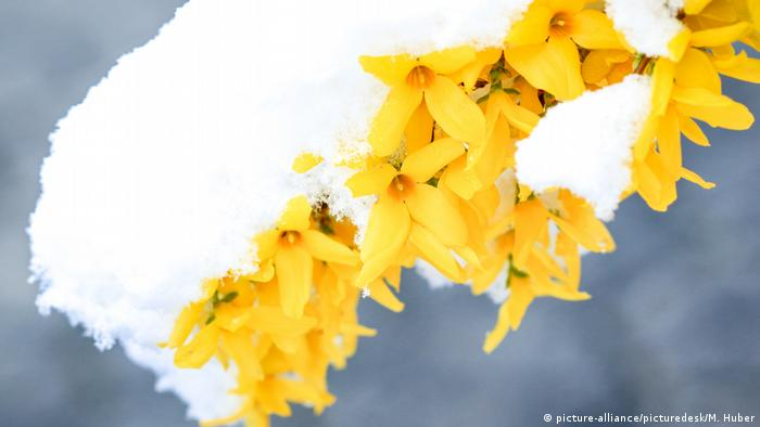 Aprilwetter (picture-alliance/picturedesk/M. Huber)