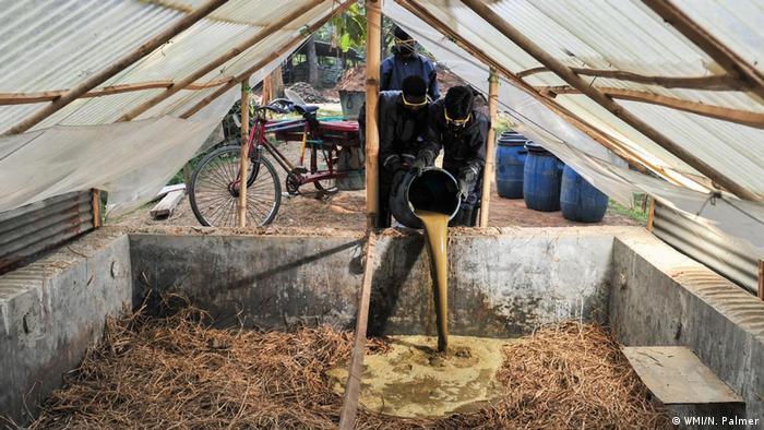Bangladesch - Kompostverarbeitung (WMI/N. Palmer)