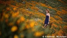 A woman walks through a massive spring wildflower bloom caused by a wet winter in Lake Elsinore, California, U.S., March 14, 2017. REUTERS/Lucy Nicholson