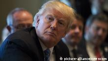 USA Donald Trump im Weißen Haus in Washington (picture-alliance/newscom)