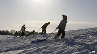 Children with sleds walk up a hill