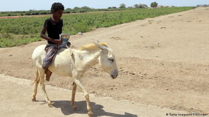 Un niño yemení montado en un burro.
